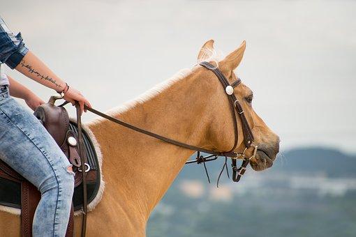 רכיבת סוסים בפרטולי - מטאורה