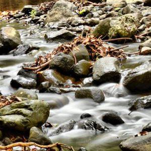 נהר זורם 20