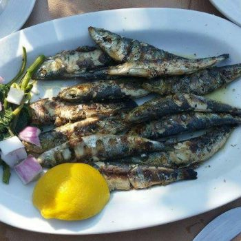 סרדינים מהים טריים יוונים