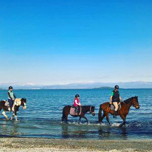 רכיבת סוסים לאורך הים בפרבזה